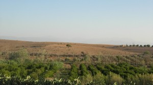 Land for tourism project, 9 kilometers from Marrakech airport