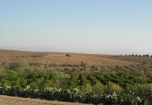 Terrain pour tous projet à 9 kilomètres de l'aéroport de Marrakech
