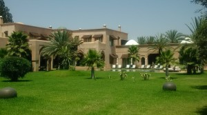 Outstanding in every way. Sumptuous villa in the palm grove