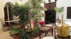 Situé dans un excellent quartier proche de la place Jamaâ El Fna, riad d'un excellent rapport prix/M²