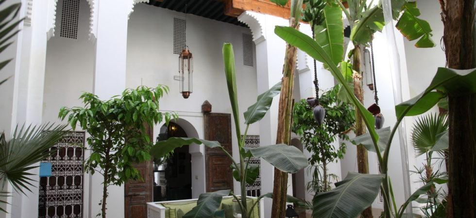 Somptueux riad du 18 siècles, deux patios, une magnifique douiria et ses boiseries anciennes, un spa et une superbe terrasse