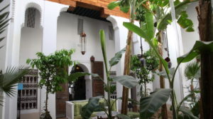 Sumptuous riad of 18 centuries, two patios, a magnificent douiria and its old woodwork, a spa and a superb terrace