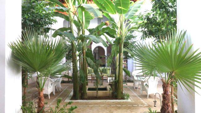 Somptueux riad du 18 siècle à deux minutes de le place Jamaâ El Fna. Double patio, spa, piscine chauffée, 7 belles chambres dont deux dans la magnifique douiria. Un bien exceptionnel