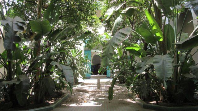 Exceptionnel riad privé au cœur de la médina. Un magnifique jardin, une architecture de toute beauté, sublimée par ses somptueux stucs et zouaks. Petite douiria non rénové