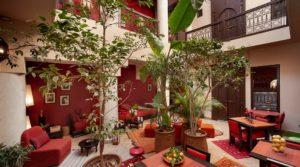 A proximité de la place Jamaâ El Fna, charmante maison d'hôtes mettant 15 ans d'expérience à votre service. Belle affaire
