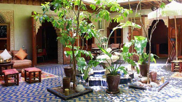A quelques encablures de la place Jamaâ El Fna, charmante maison d'hôtes mettant à votre service, plus d'une décennie d'exploitation et expérience. 5 chambres, joli patio arboré et magnifique terrasse avec son jacuzzi chauffé